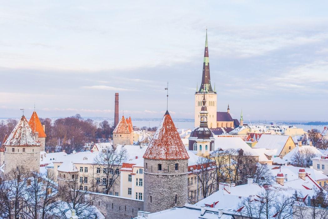 Электронное гражданство Эстонии: что это?