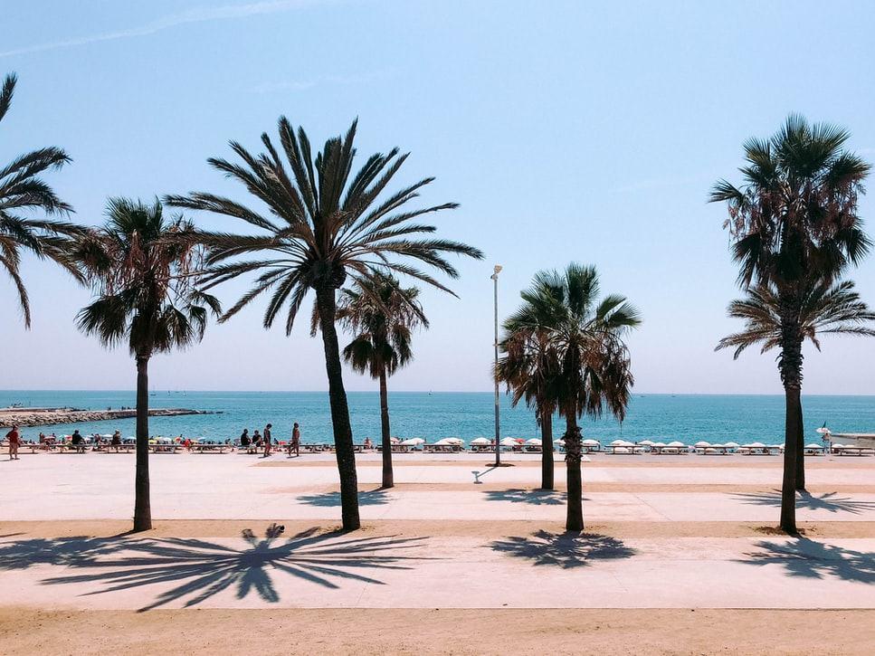 Мадрид или Барселона? Выбор эмигранта