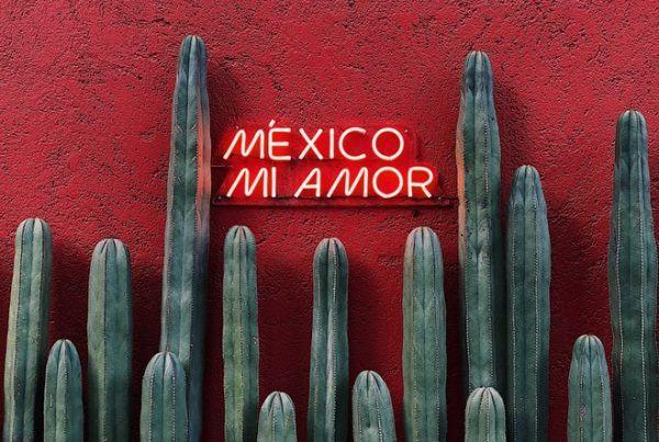жилье в Мехико