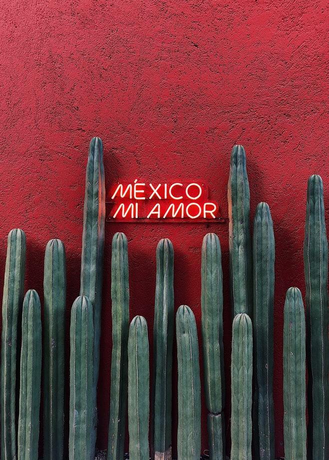 Найти жилье в Мехико: куда бежать от бюрократии