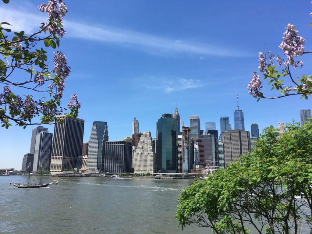 Личный опыт: как стать хэлс-коучем в Нью-Йорке